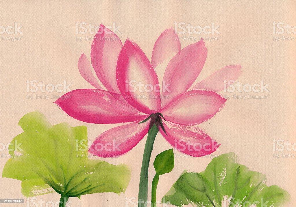 Lotus Flower watercolor painting vector art illustration