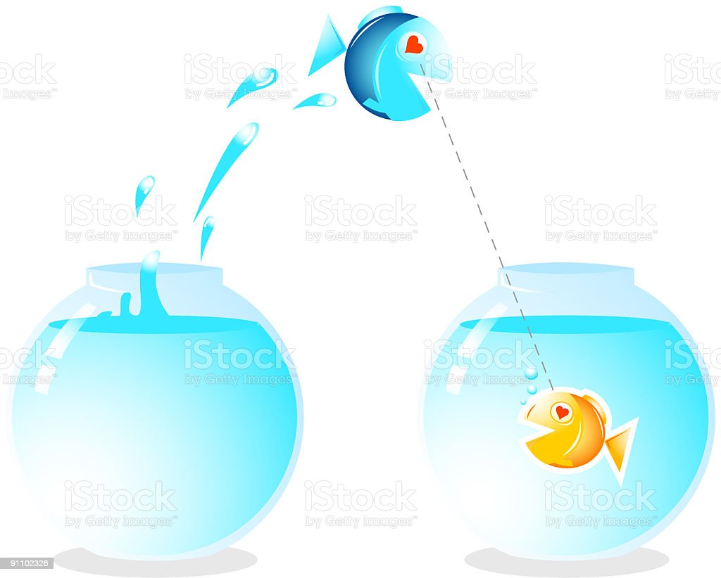 Love with two fishes royalty-free stock vector art