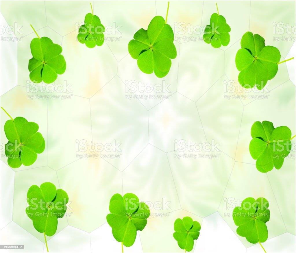 Lucky clover shamrock holiday card vector art illustration