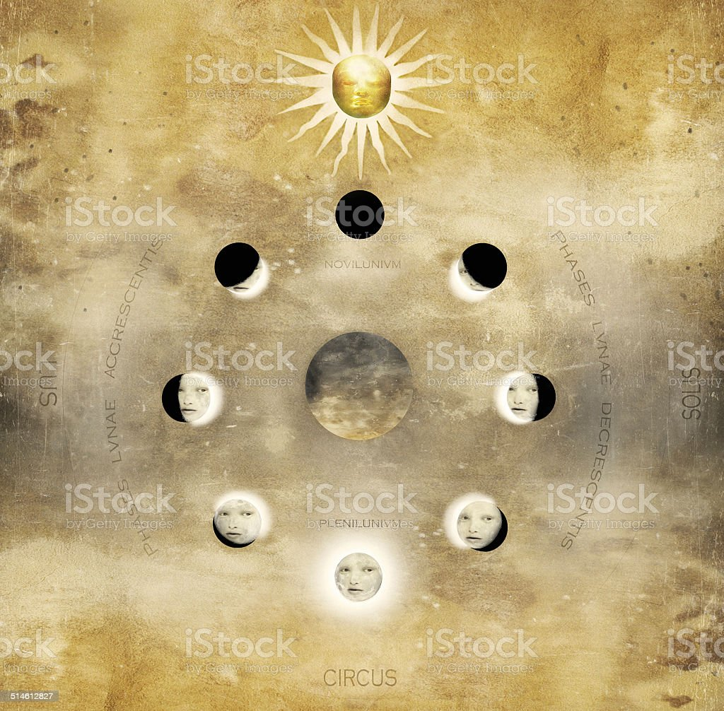 Lunar Phases in circular vector art illustration