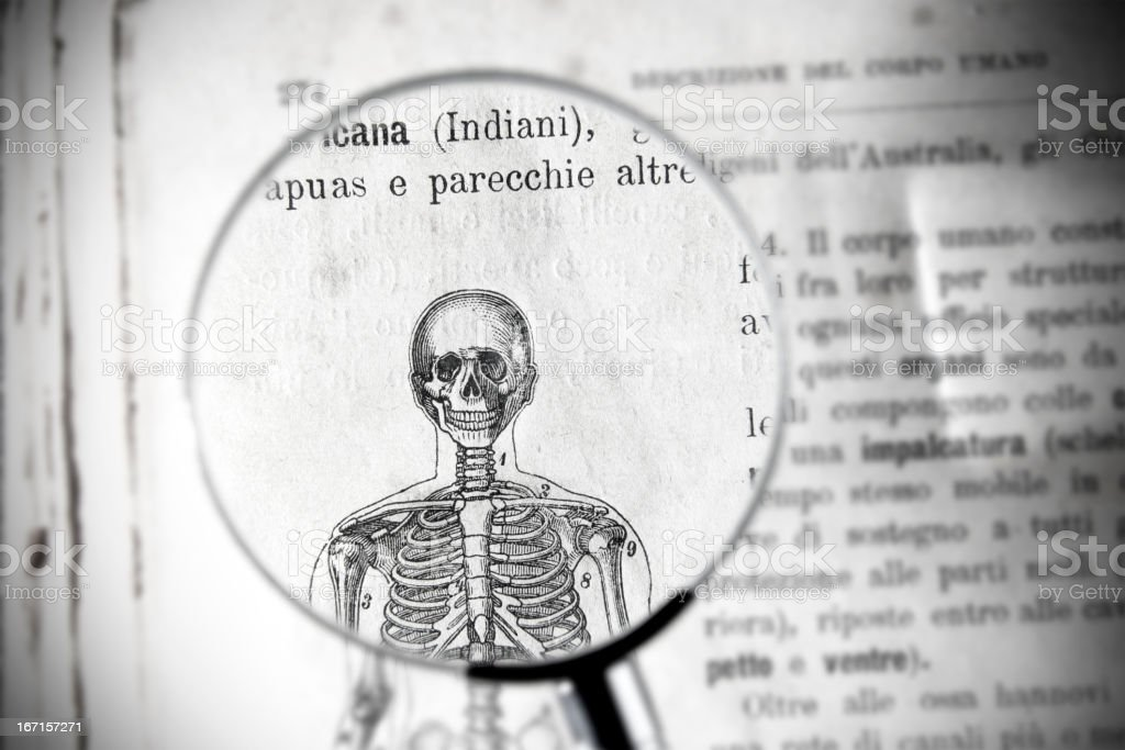 Magnifying glass on antique medical book showing skeleton parts royalty-free stock vector art