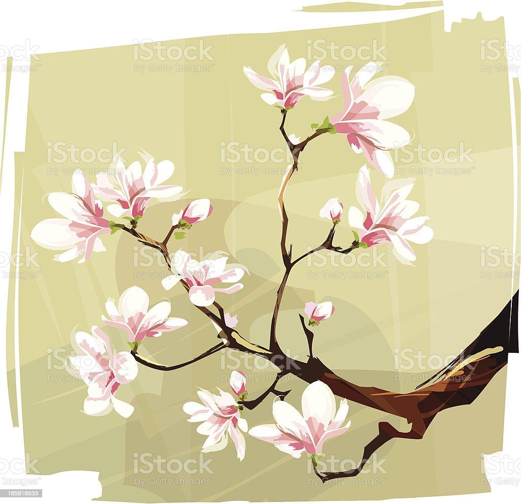 Magnolia royalty-free stock vector art