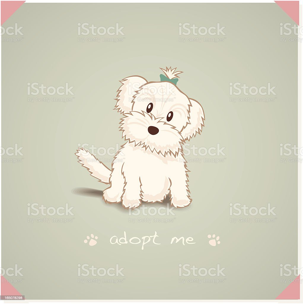 Maltese Dog royalty-free stock vector art