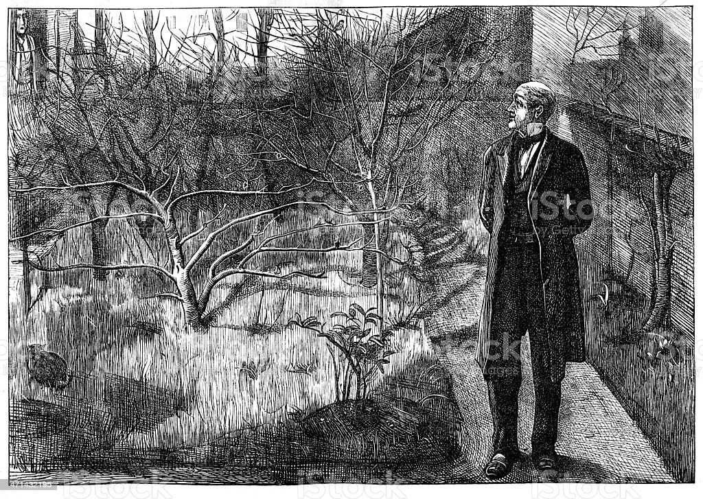 Man in walled garden looking at trees from 1867 journal vector art illustration