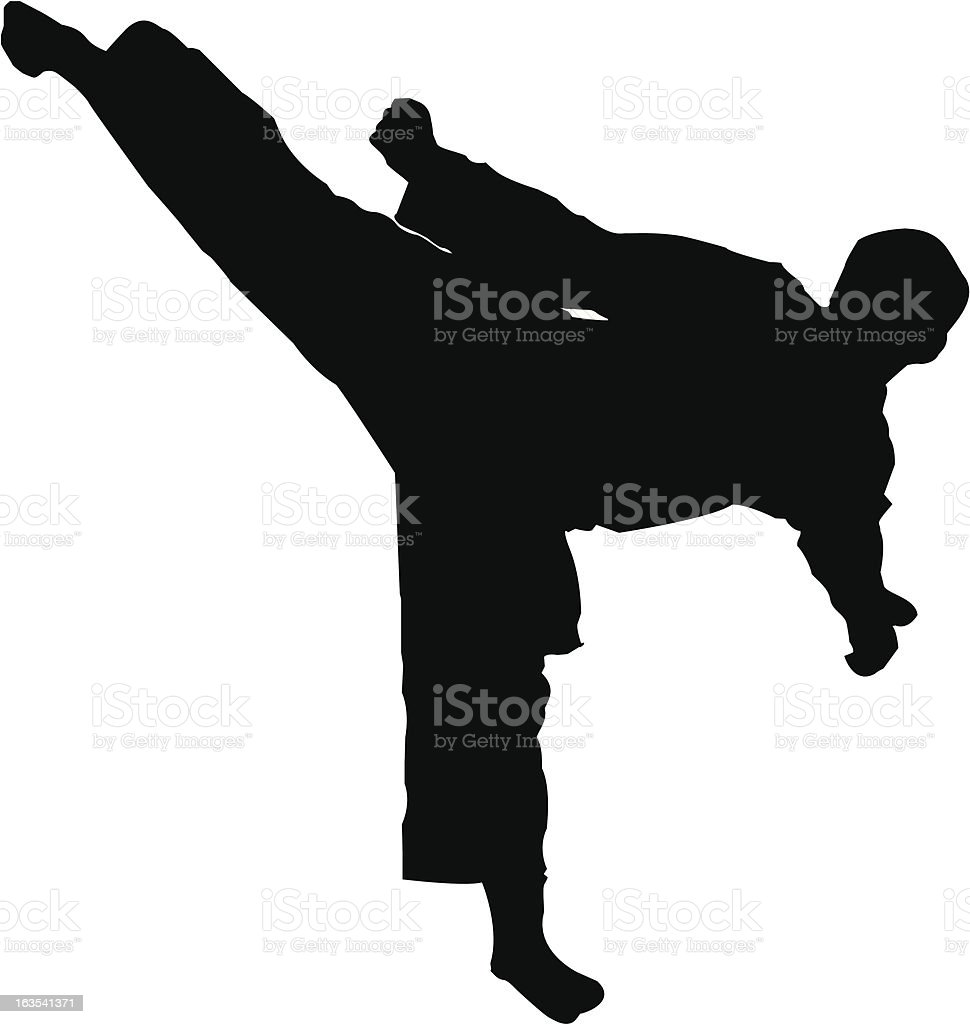 Martial Arts Sidekick vector art illustration
