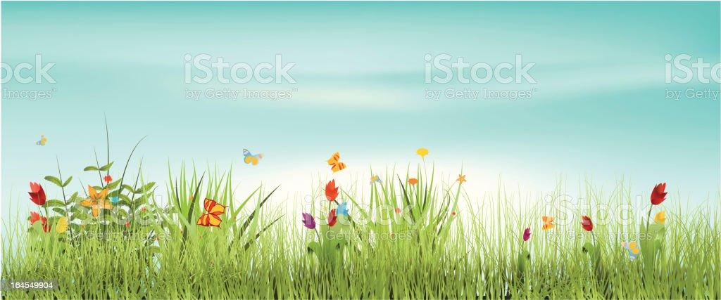 Meadow vector art illustration