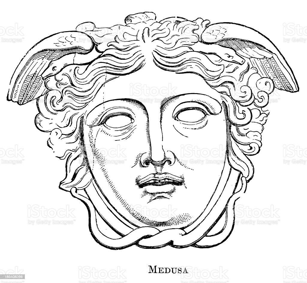 Medusa vector art illustration