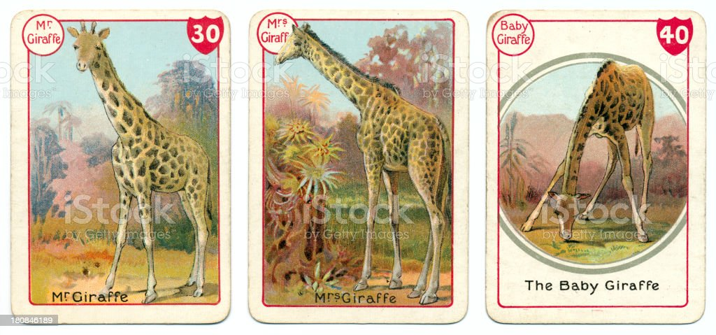Three giraffe playing cards Victorian animal families game vector art illustration
