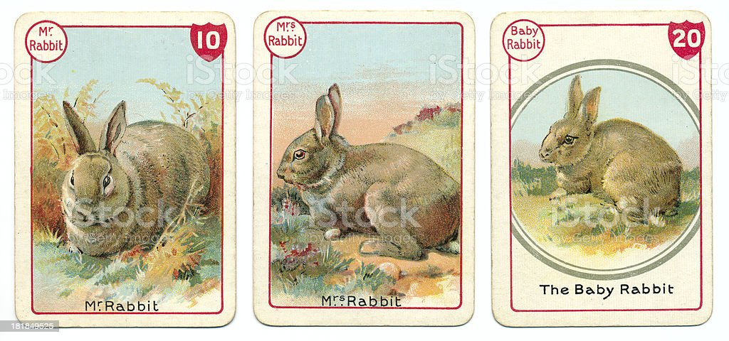 Three rabbit playing cards Victorian animal families game vector art illustration