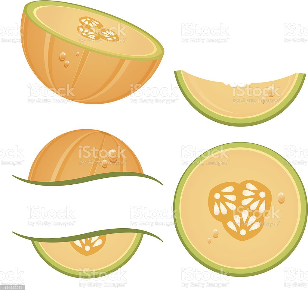 Melons royalty-free stock vector art