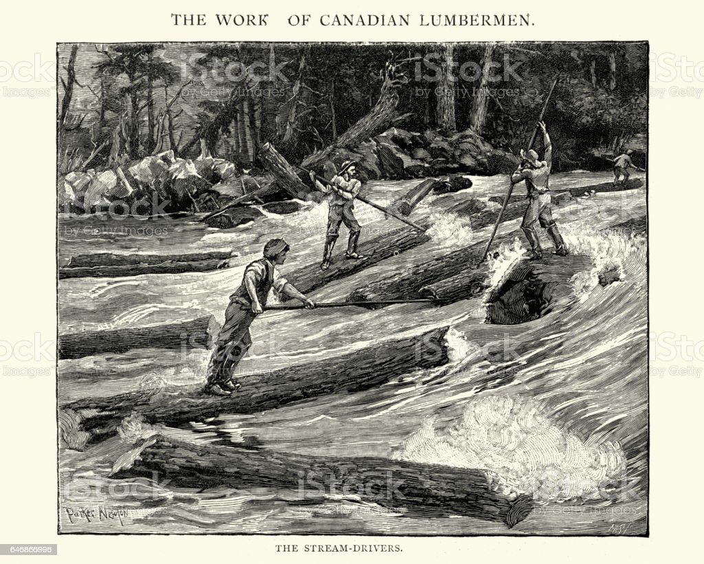 Men Log driving in the Canadian forest, 19th Century vector art illustration