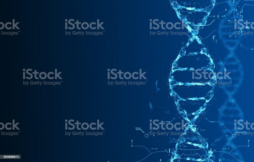 Molecules of DNA vector art illustration