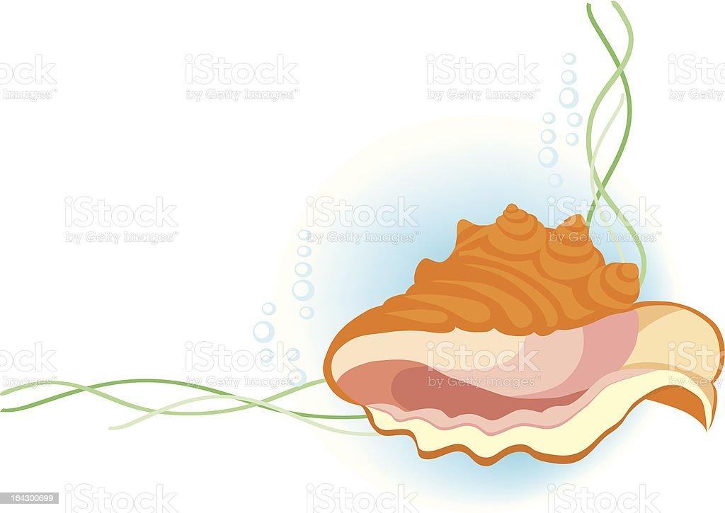 Mollusc royalty-free stock vector art