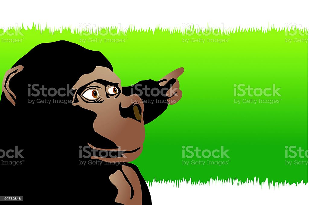 Monkey pointing vector art illustration