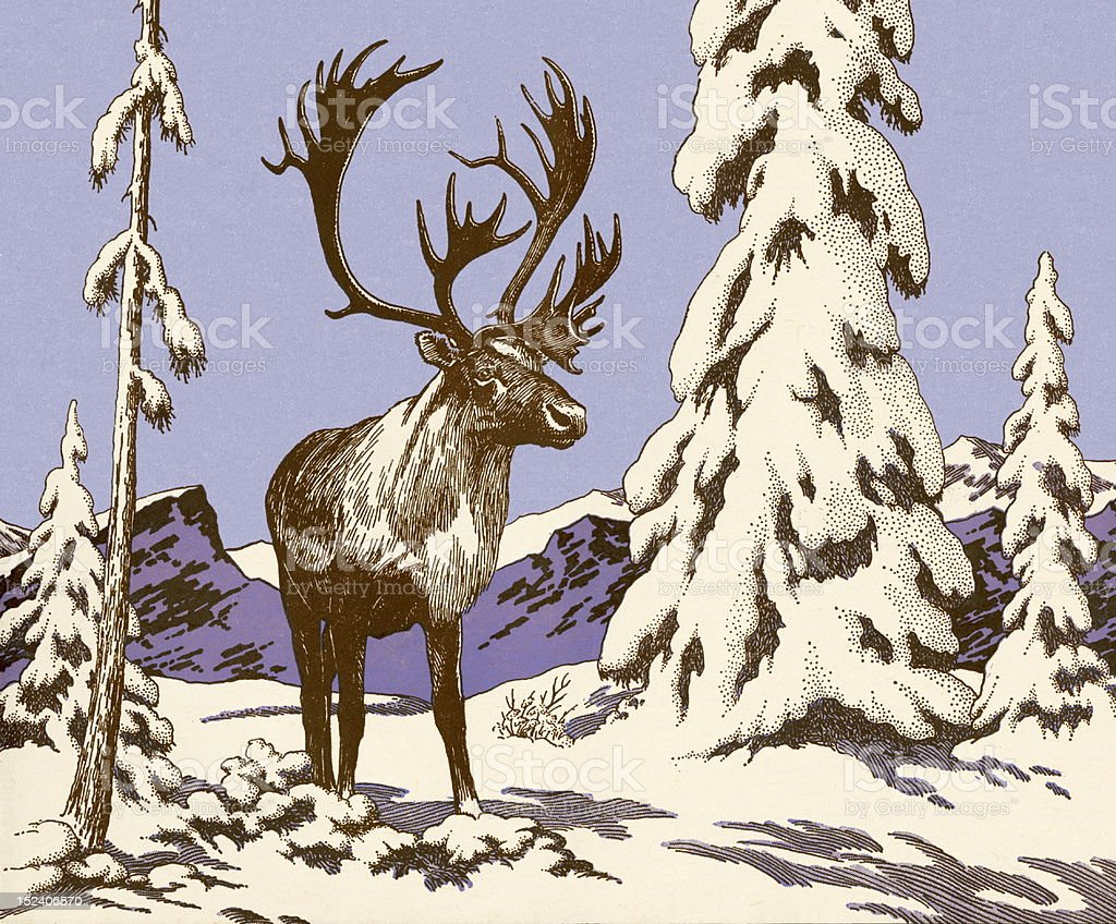 Moose in the Snow royalty-free stock vector art