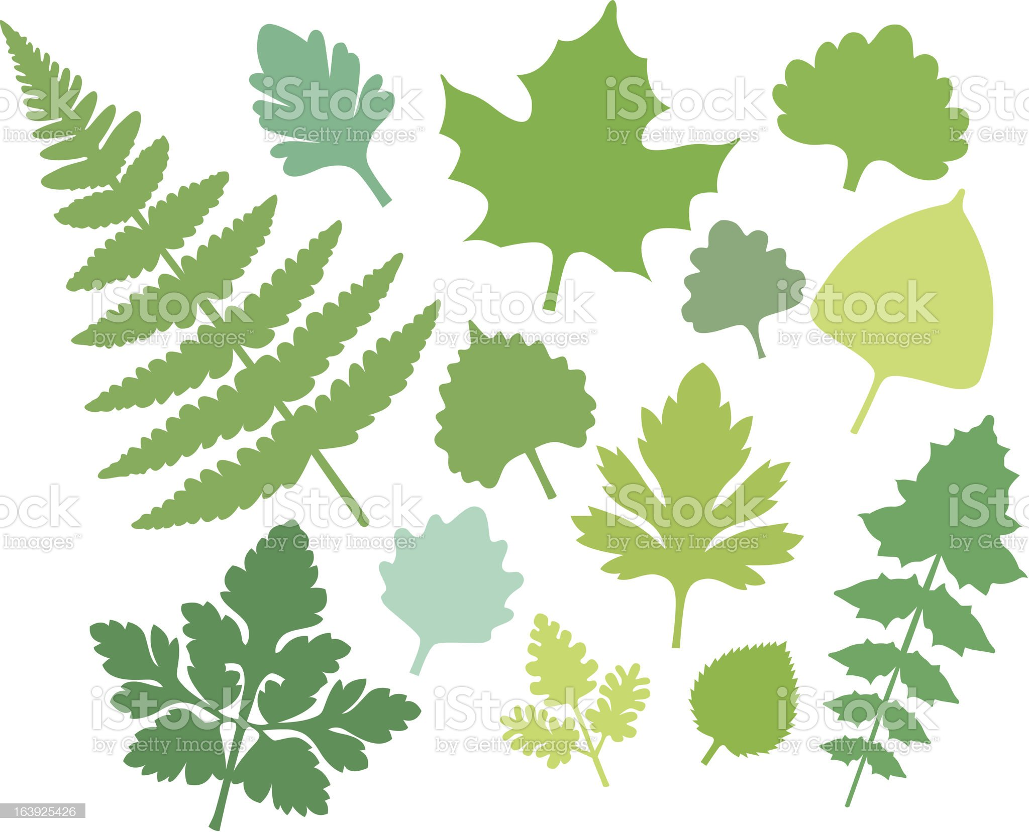 more green Leaf shapes (IV) royalty-free stock vector art