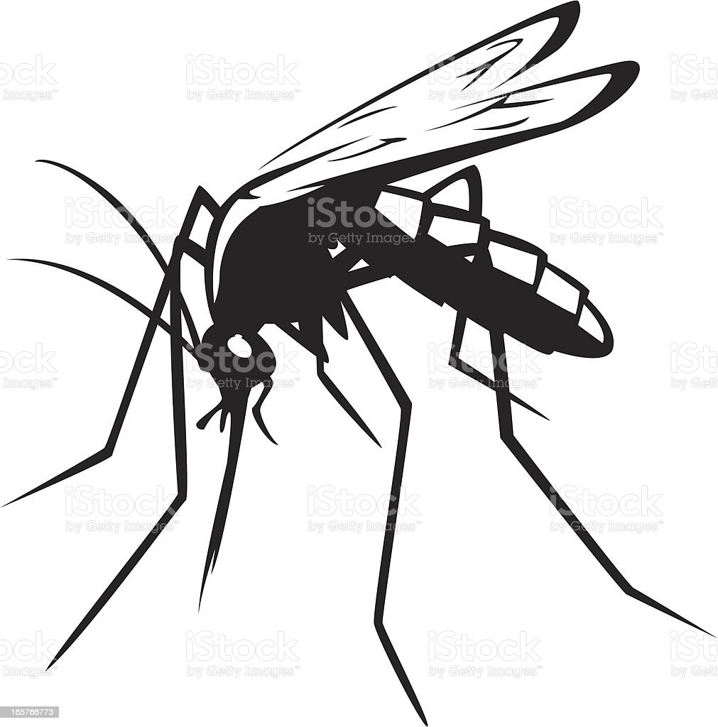 mosquito graphic royalty-free stock vector art