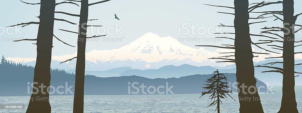 Mount Baker, Washington State panoramic vector art illustration