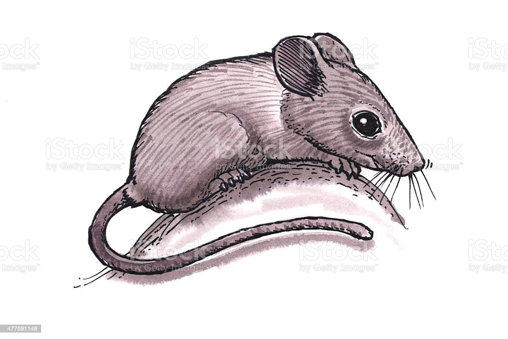 Maus (Comic Lizenzfreies vektor illustration