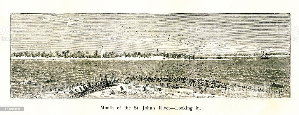 Mouth of St. Johns River, Florida | Historic American Illustrations royalty-free stock vector art