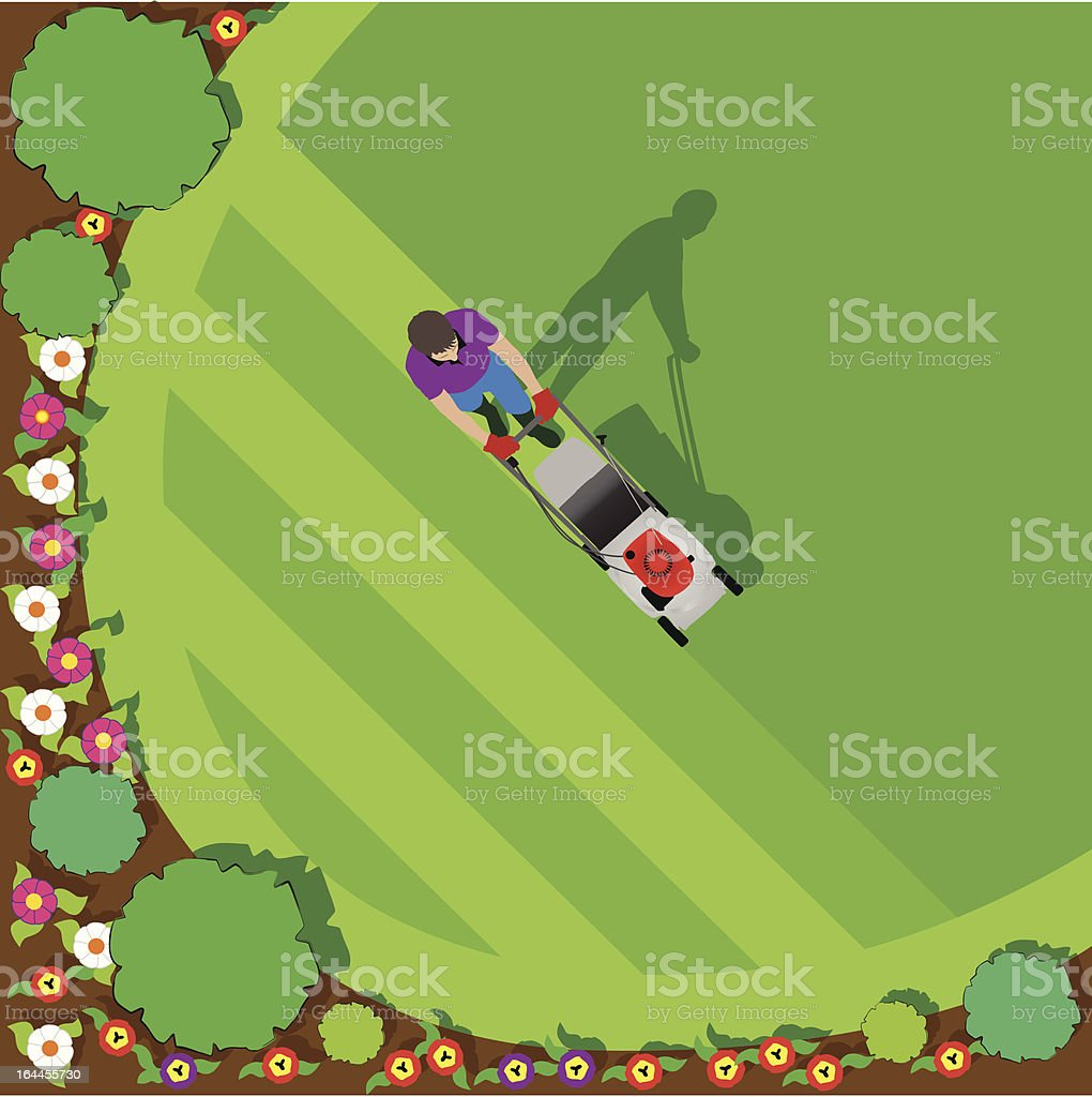 Mowing the Lawn Round a Flower Bed vector art illustration