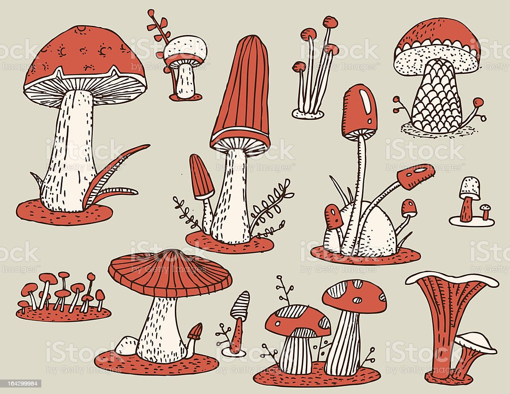 Mushrooms etching royalty-free stock vector art