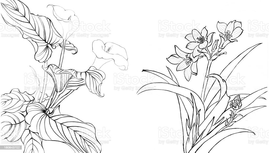 my art work --Chinese painting,flower vector art illustration