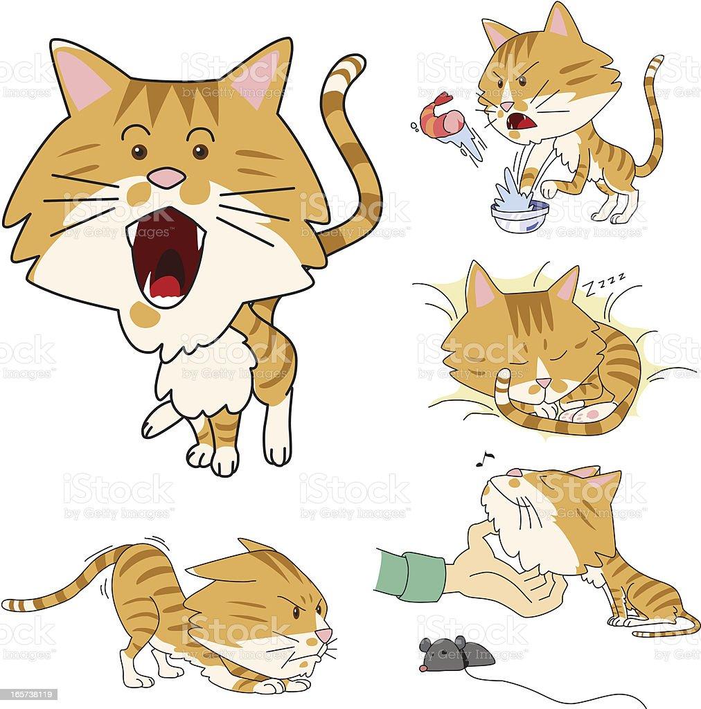 My cat Chattla royalty-free stock vector art