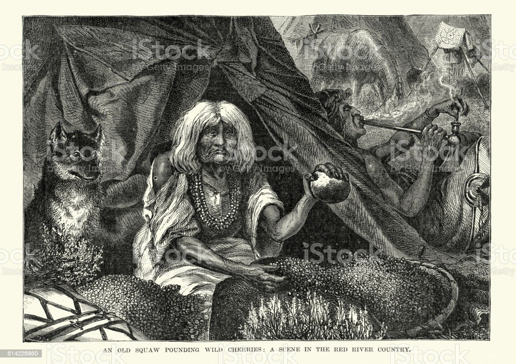 Native American squaw pounding cherries, 19th Century vector art illustration