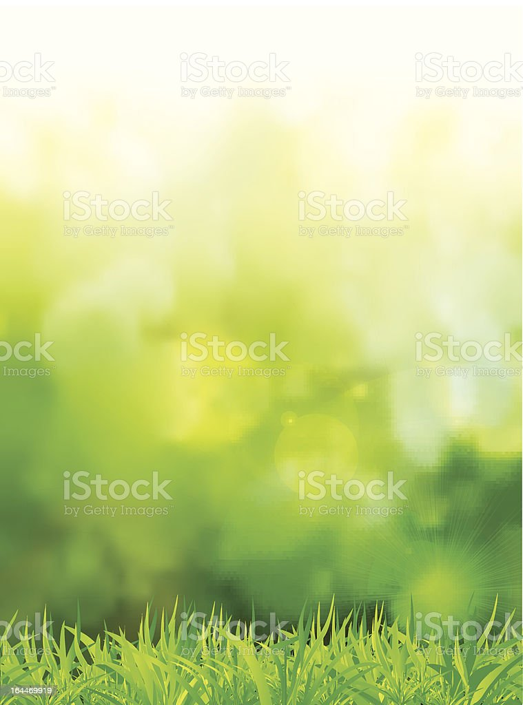 natural green background with selective focus vector art illustration
