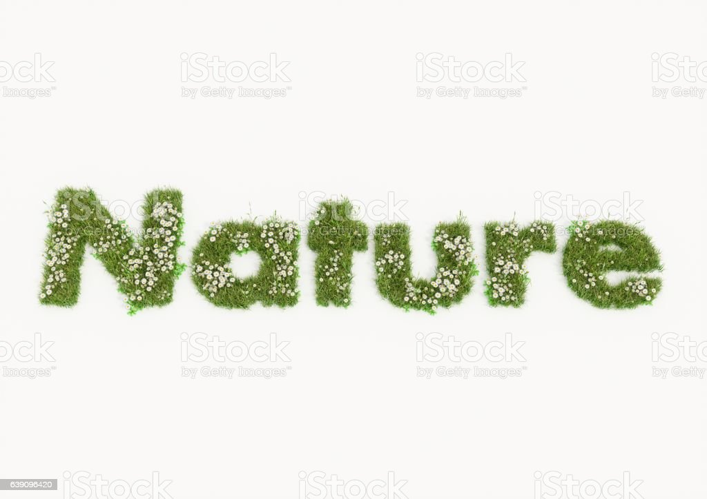 Nature word typed by flowers and grass vector art illustration