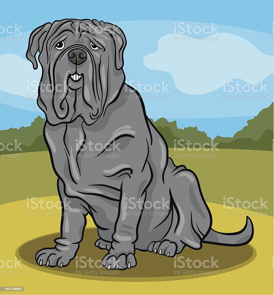 neapolitan mastiff dog cartoon illustration royalty-free stock vector art