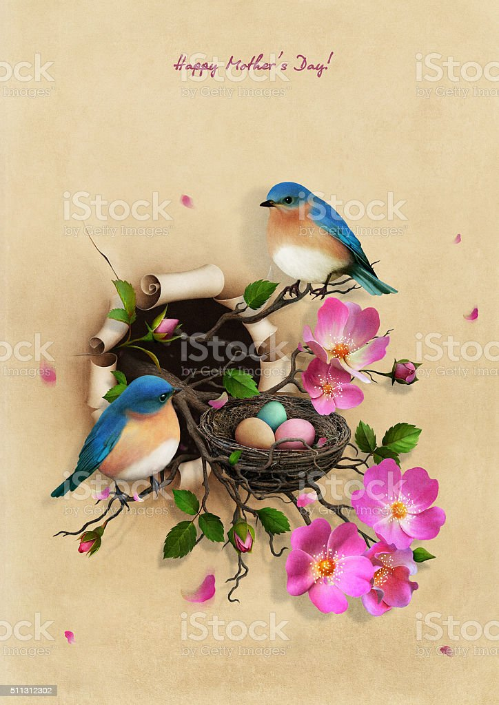 Nest with two blue birds vector art illustration