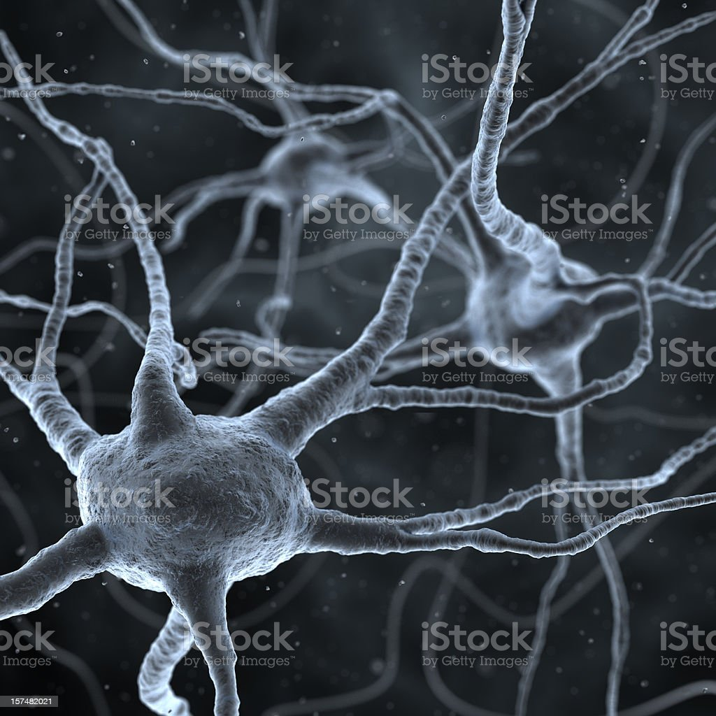 neurons royalty-free stock vector art