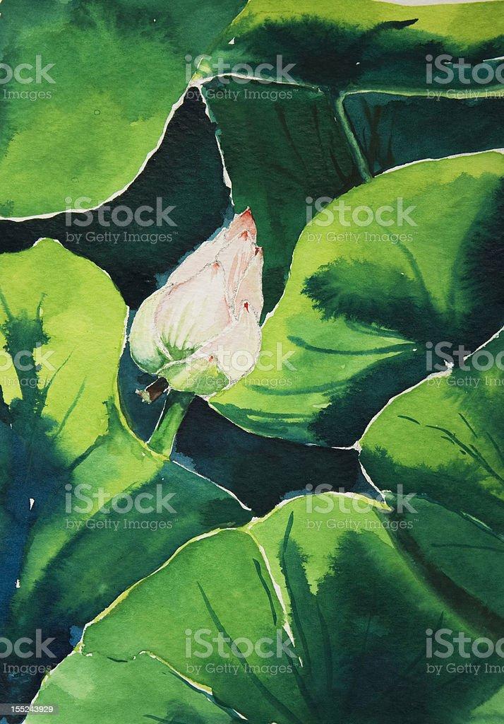 New Born Lotus vector art illustration