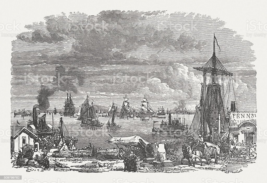 New York Bay, wood engraving, published in 1880 vector art illustration