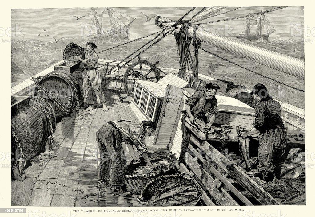 Newfoundland Cod Fishery - Decolleurs at work vector art illustration