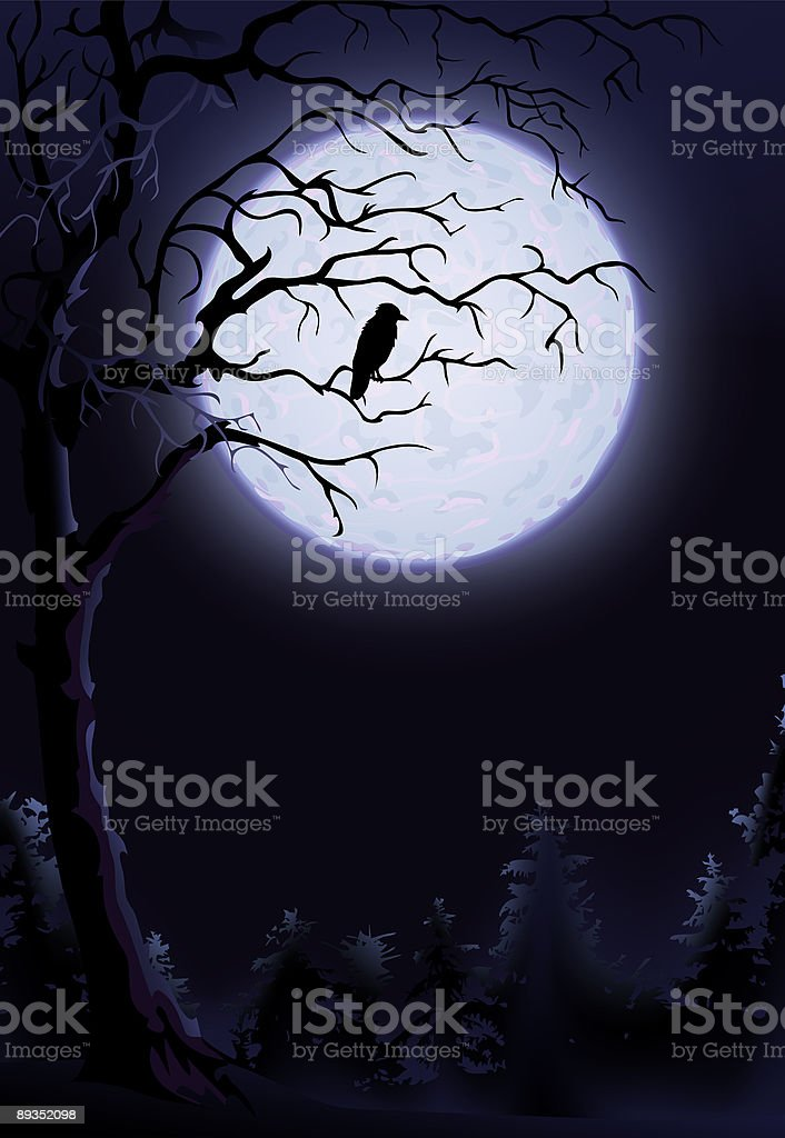 Night raven on a tree royalty-free stock vector art