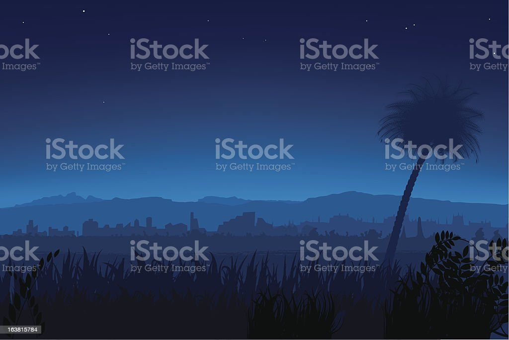 Nightly landscape royalty-free stock vector art