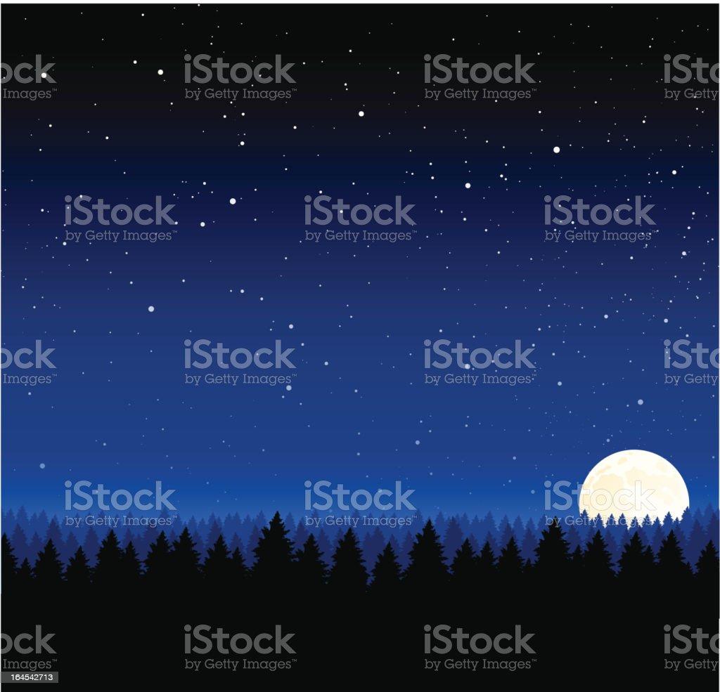 Nighttime Background vector art illustration