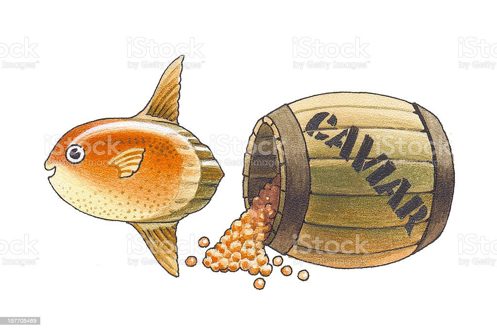 Ocean sunfish royalty-free stock vector art