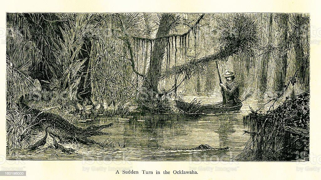 Ocklawaha River, Florida royalty-free stock vector art