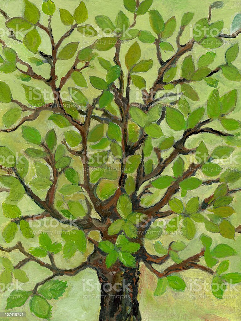 Oil painted of decorative big tree in spring time. royalty-free stock vector art