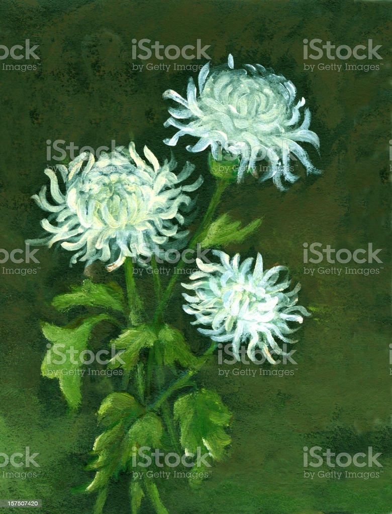 Oil painted Three Chrysanthemum Flowers vector art illustration