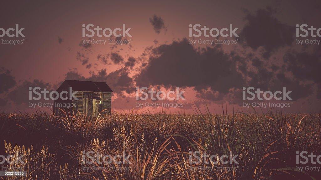 Old abandoned wooden barn on prairie at sunset. vector art illustration