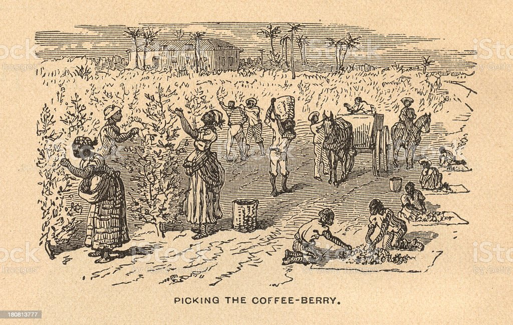 Old, Black and White Illustration of Slavery, From 1875 vector art illustration