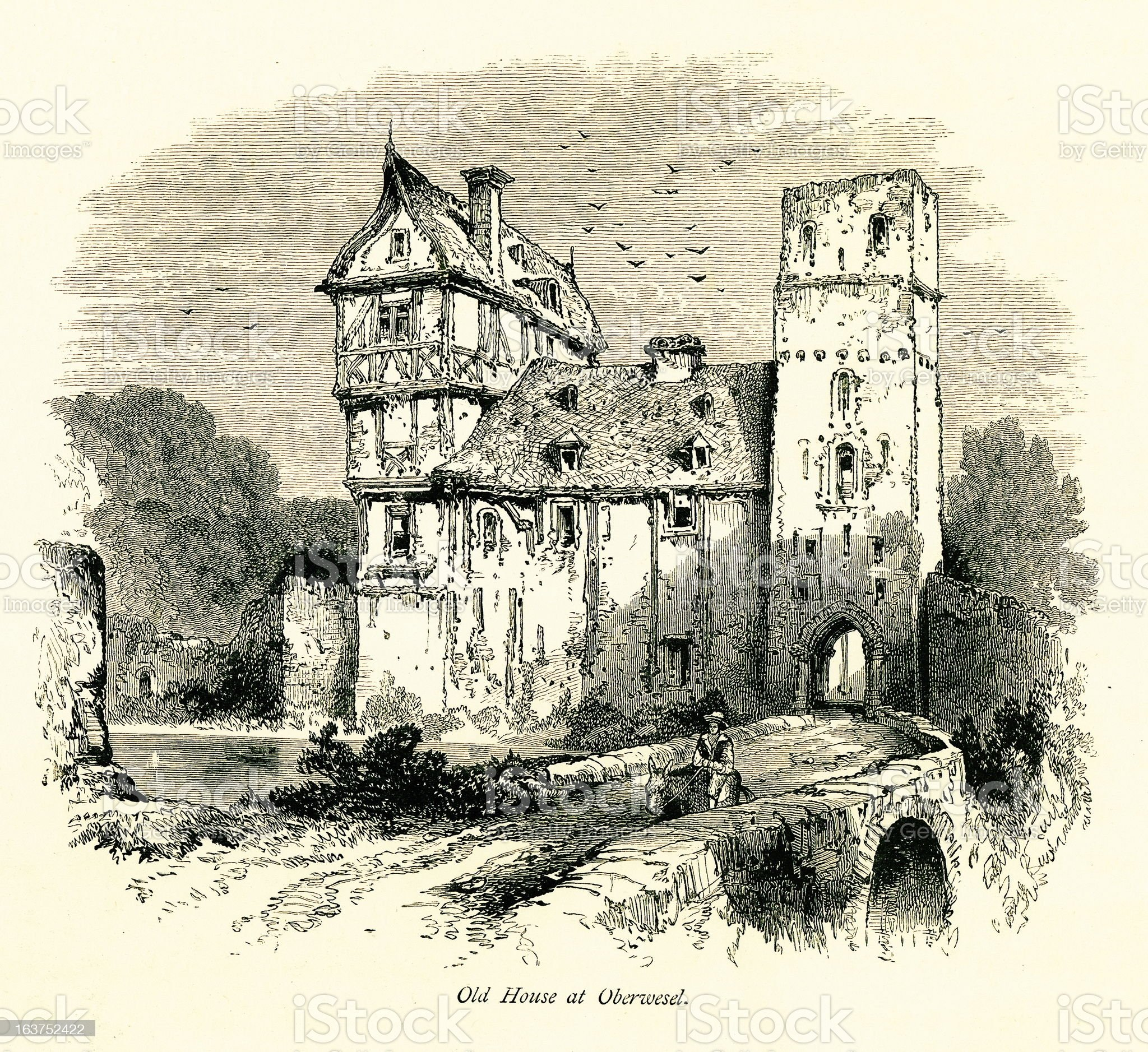 Old house at Oberwesel, Germany I Antique European Illustrations royalty-free stock vector art