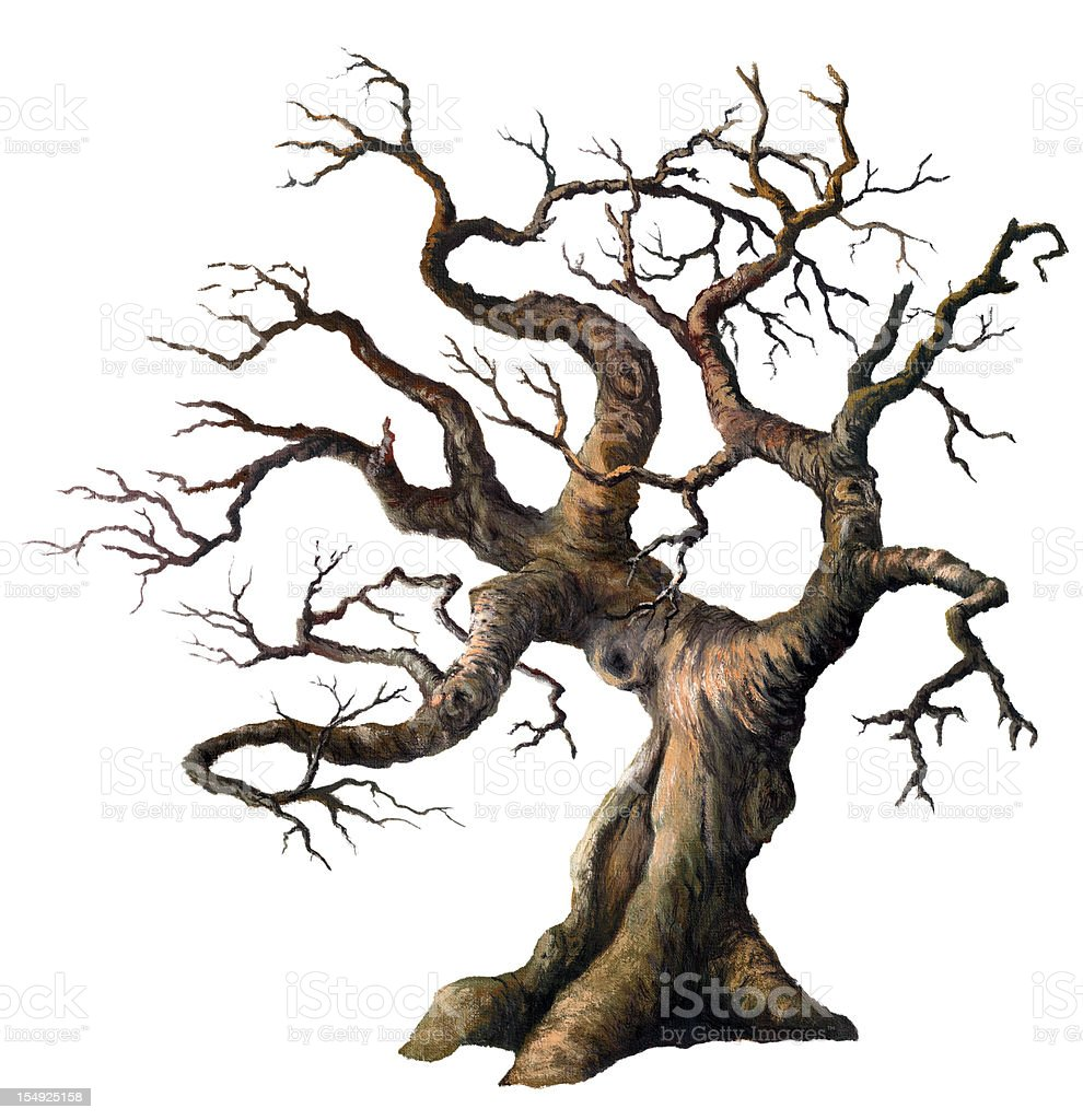 Old Oak vector art illustration