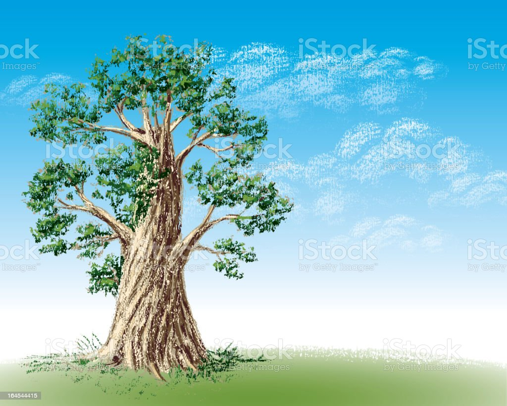old tree stock vector art 164544415 istock