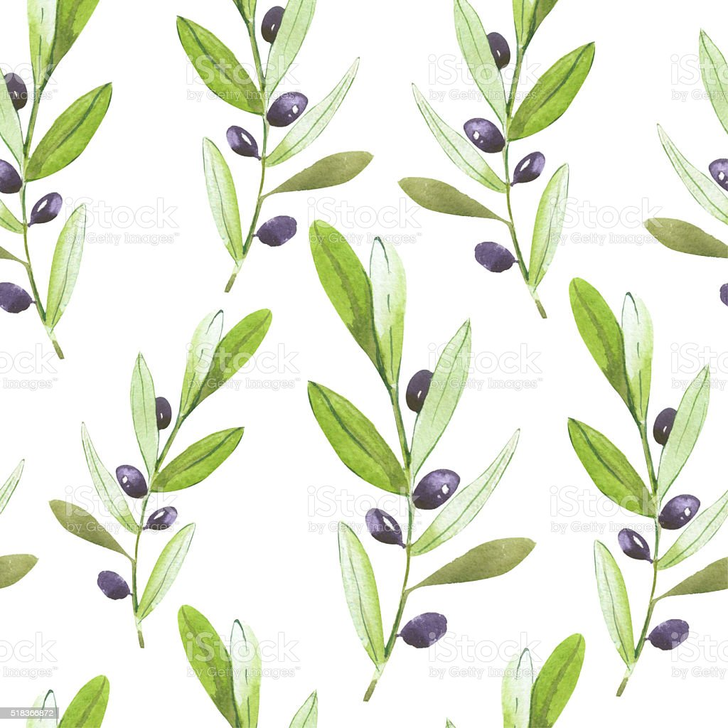 Olives background. Olive branch. vector art illustration